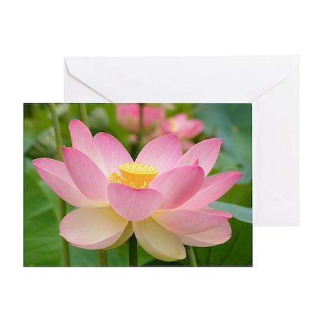 Lotus Blossum Greeting Card flower gift