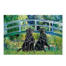 Flat Coated Retriever (two) Postcards (Package of
