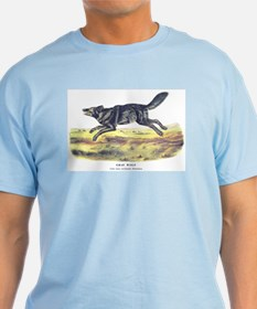 Audubon Gray Wolf Animal T-Shirt
