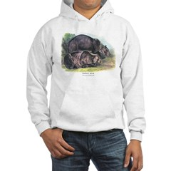 Audubon Grizzly Bear Animal (Front) Hoodie