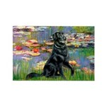 Lilies / Flat Coated Retrieve Rectangle Magnet (10