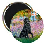 Flat Coated Retriever 2 Magnet