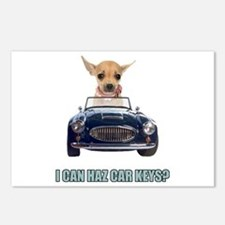 Chihuahua Driving Car Postcards (Package of 8)