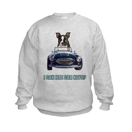 LOL Boston Terrier Kids Sweatshirt