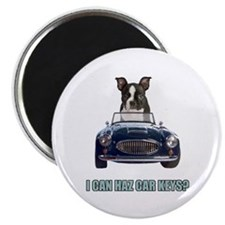 LOL Boston Terrier Magnet