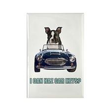 LOL Boston Terrier Rectangle Magnet