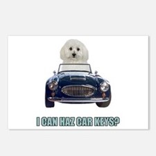 LOL Bichon Frise Postcards (Package of 8)