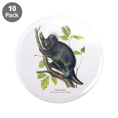 """Audubon Porcupine Animal 3.5"""" Button (10 pack)"""