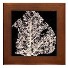 Leaf Lace In Space - Framed Tile