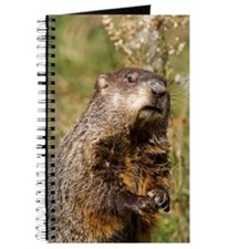 Groundhog Journal