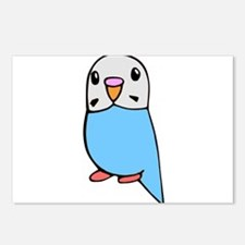 Cute Blue Budgie Postcards (Package of 8)