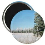 "Frosty Fields & Trees 2.25"" Magnet (10 pack)"