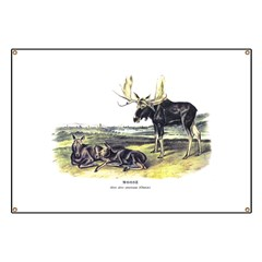 Audubon Moose Animal Banner