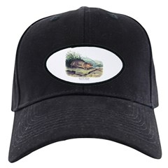 Audubon Mountain Beaver Animal Baseball Hat