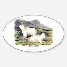 Audubon Mountain Goat Animal Oval Decal