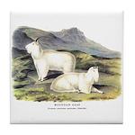 Audubon Mountain Goat Animal Tile Coaster