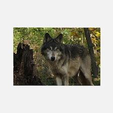 Wolf Spirit Rectangle Magnet
