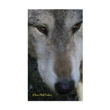 Wolf Portrait Rectangle Decal