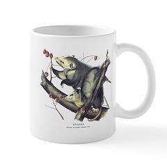 Audubon Opossum Possum Mug