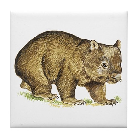 Wombat drawing Tile Coaster