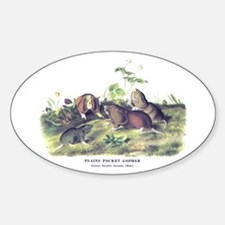 Audubon Gopher Animal Oval Decal
