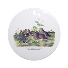 Audubon Gopher Animal Ornament (Round)