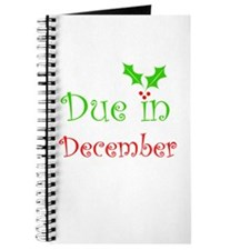 Due in December (holiday) Journal