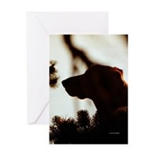 Dog in Pine Silhouette Greeting Card