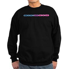 Bisexual Morse Bar Sweatshirt (dark)