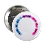 "Bisexual Morse Arc 2.25"" Button (10 pack)"