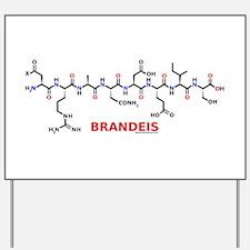 Brandeis name molecule Yard Sign