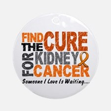 Find The Cure 1 KIDNEY CANCER Ornament (Round)
