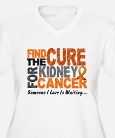 Find The Cure 1 KIDNEY CANCER T-Shirt