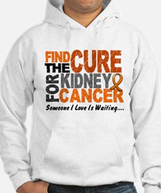 Find The Cure 1 KIDNEY CANCER Hoodie