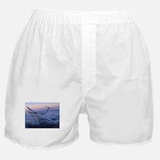 King Air in Flight Boxer Shorts