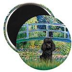 Bridge / Poodle (Black) Magnet