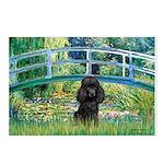 Bridge / Poodle (Black) Postcards (Package of 8)