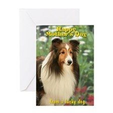 Sheltie Mother's Day Card