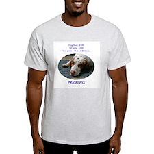 Priceless Ash Grey T-Shirt