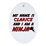 my name is clarice and i am a ninja Ornament (Oval