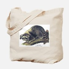 Audubon Raccoon Coon Tote Bag