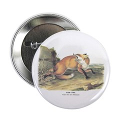 Audubon Red Fox Animal 2.25