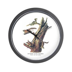 Audubon Flying Squirrel Wall Clock