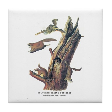 Audubon Flying Squirrel Tile Coaster