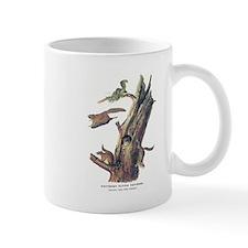 Audubon Flying Squirrel Mug