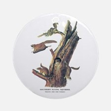 Audubon Flying Squirrel Ornament (Round)