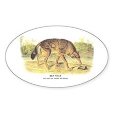 Audubon Red Wolf Animal Oval Decal