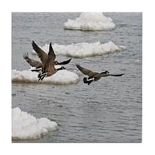Flying Canadian Geese Tile Coaster