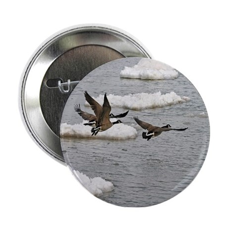 "Flying Canadian Geese 2.25"" Button"