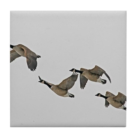 Canadian Geese In Flight Tile Coaster